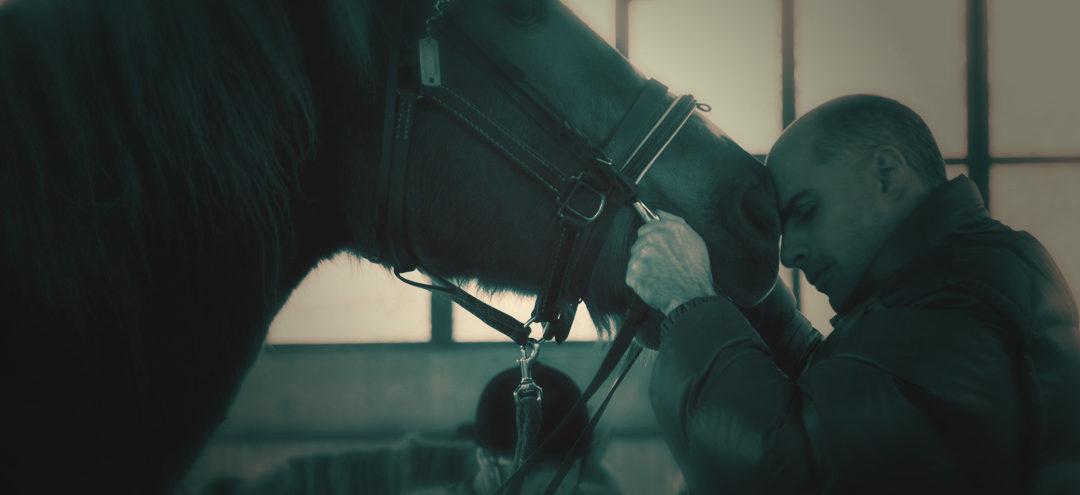 Terapia con il cavallo