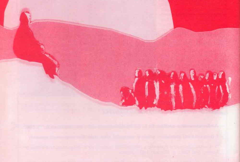 Quarte di copertina