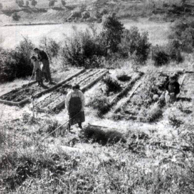 Casa Loïc, le attività: orticultura - Ombre e Luci n. 45 - 1994